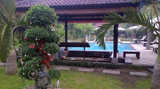 Tirta Sari Bungalows: Pool and pool bar