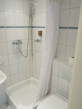 Altstadt Hotel Magic Luzern : Very small bathroom!