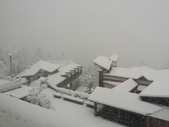 Manuallaya -The Resort Spa in the Himalayas : Outside view from the balcony on a snowy day.