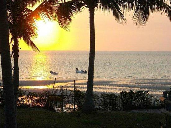 Baobab Beach Backpackers: Early Morning
