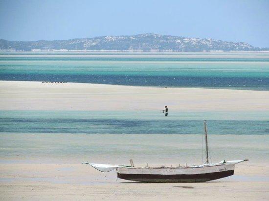 Baobab Beach Backpackers: Low tide