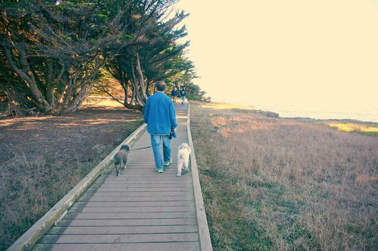 The Andiron -- Seaside Inn & Cabins: Lots of hiking trails and boardwalks