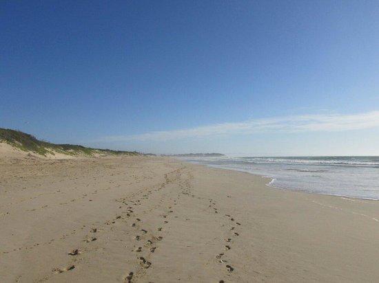Moya Manzi Beach House: Footprints in the sand ! Janet and mark Nov 2013