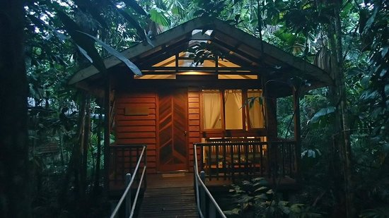 Daintree Wilderness Lodge: Our cabin named ´Black Bean´