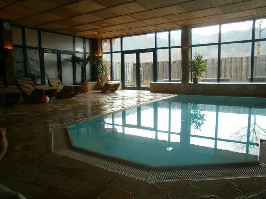 Ferienparadies Schwarzwälder Hof: piscine