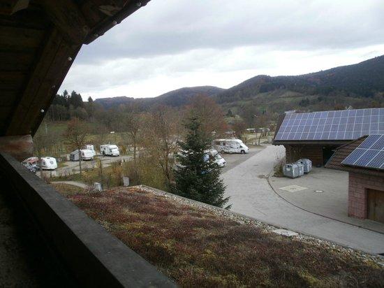 Ferienparadies Schwarzwälder Hof: vue de la chambre