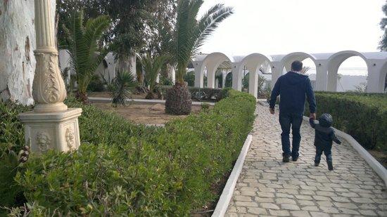 The Sindbad: walking around hotel gardens