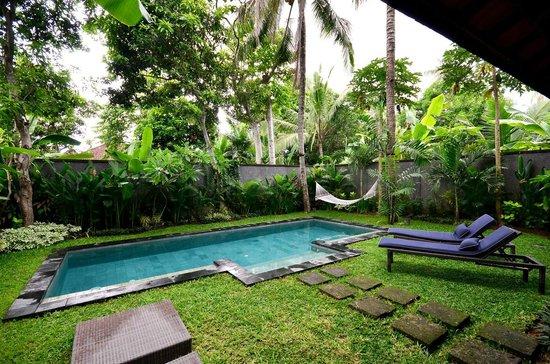 Mango Tree Villas: Pool view