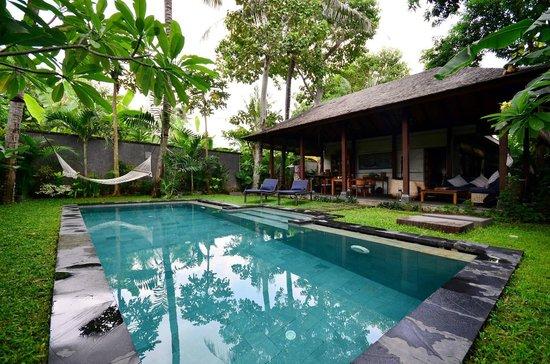 Mango Tree Villas: Pool area