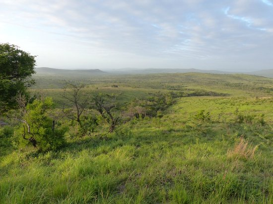 EuroZulu Guided Tours & Safaris: Scenery Hluhluwe