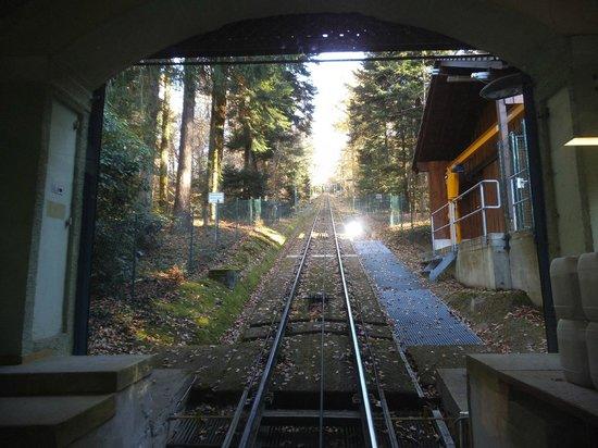 Merkur Mountain: In the train.