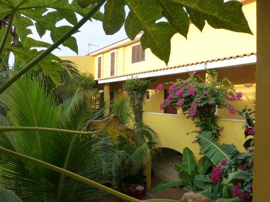 Orquidea Guest House: Tropical gardens
