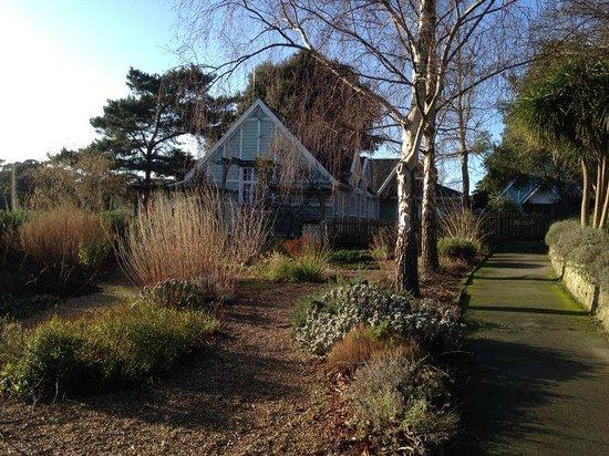 Ventnor Botanic Garden: View of the gardens