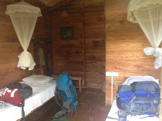 Thick Forest: Room with two single beds. Awesome view on the Sigiryia rock
