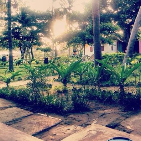 Shahira Hotel Nilaveli: the garden