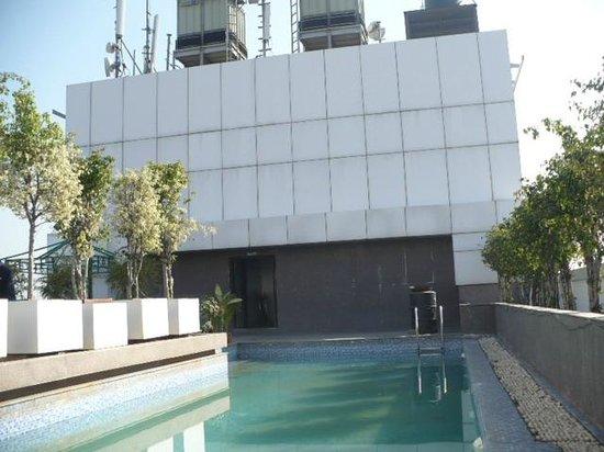 ST LAURN HOTEL, PUNE, KOREGAON PARK: the minilawn with swimming pool on the terrace