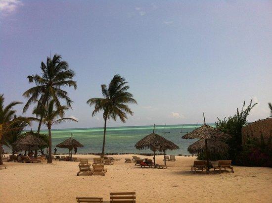 Jumbo Watamu: spiaggia