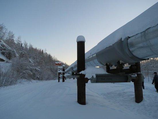 Alyeska Pipeline Visitor Center : ずっと続くパイプ