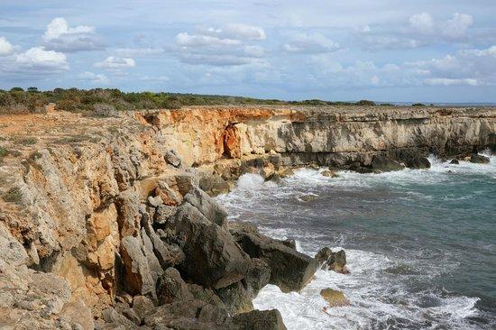 PortBlue La Quinta Hotel & Spa : Nearby coastline