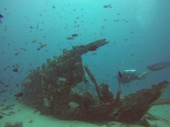 ABWonderdive + Bed & Breakfast: One of the shipwrecks we saw when diving.