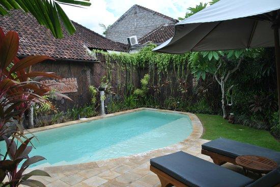 Dyana Villas: pool area