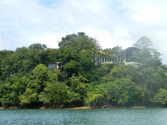Boca Piedras City