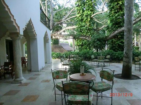 Hotel & Bungalows Mayaland: Part of hotel garden/bar area