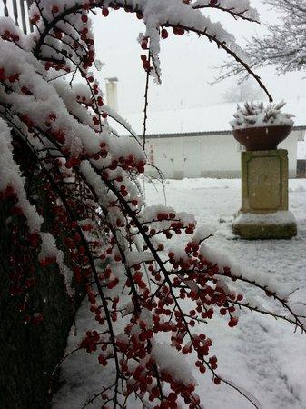 Naturhotel Wieserhof: Nevicata