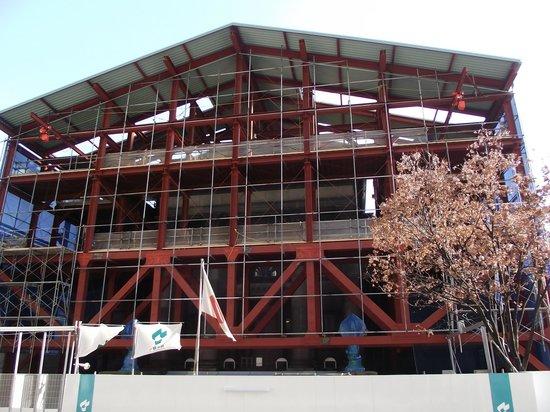 Osaka Prefecture Library: 本館正面の頑丈な覆い