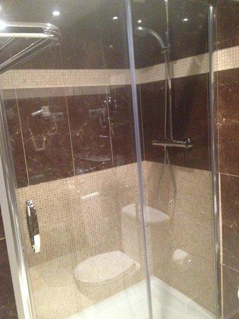 Hotel Constanza Barcelona : Shower