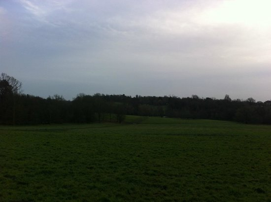 Weald Country Park: South Weald