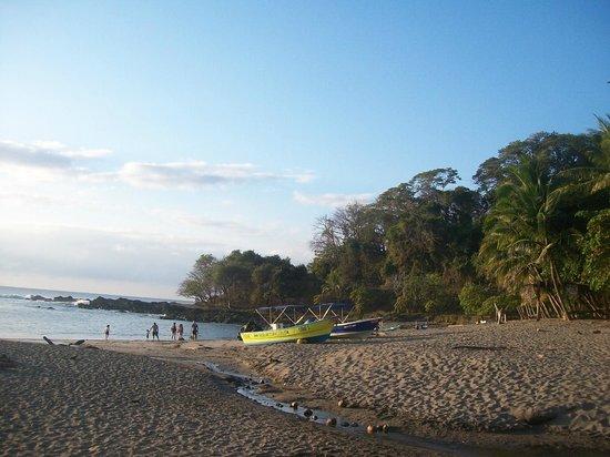 Hotel Aurora: Playa de Montezuma a 200 metros del Hotel.