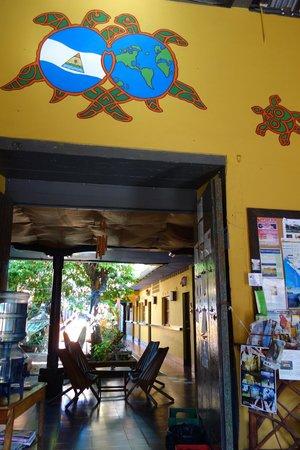 Hostal La Tortuga Booluda : First impression.