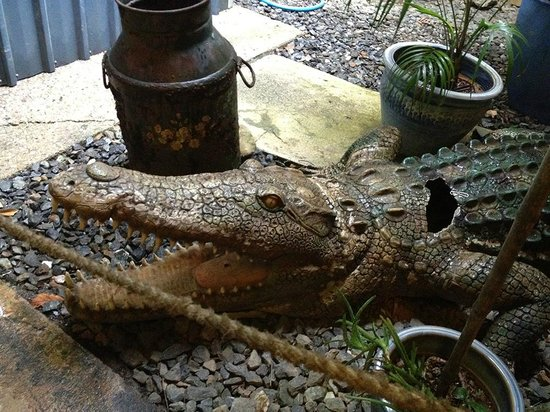 Lync-Haven Rainforest Retreat, Cabins, Camping & Wildlife Experience: Crocodile statue