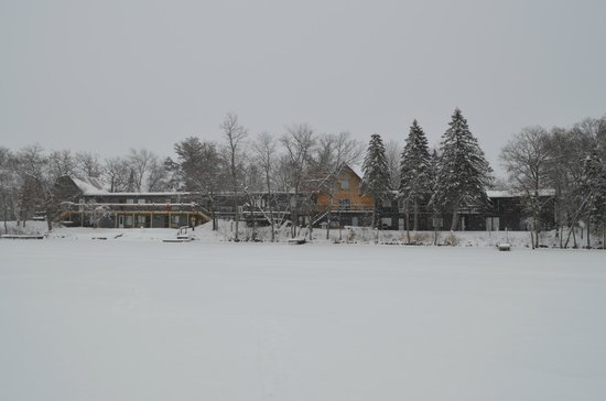 Curriers Lakeview Lodge: Lakeside winter shot.