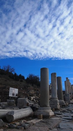 Istanbulday- Private Day Tours: Efes Ancient City - Arcadian way