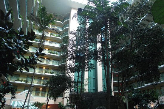 Embassy Suites by Hilton Miami - International Airport: Área central do Hotel (visão interna)