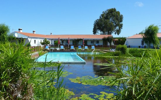 Casa Vicentina : Piscina & Lago / Swimming Pool & Lake