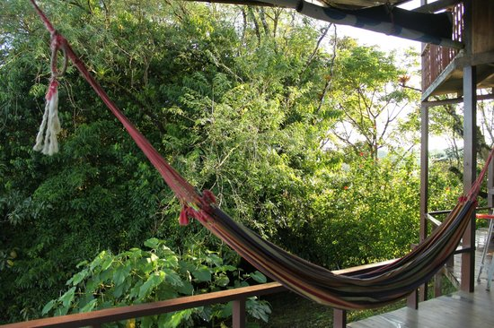 Finca Maresia: Hammock in common area