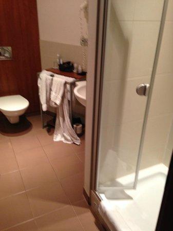 Hotel Victoria : bagno