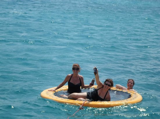 Cruise Shore Excursions Jamaica Fun And Frolic During Snorkeling Session Red Strip Beer