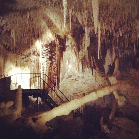Jewel Cave: Some great features to see