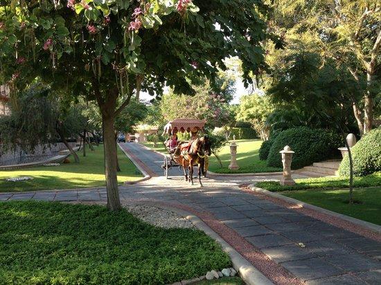 The Oberoi Rajvilas : Carriage tour of property