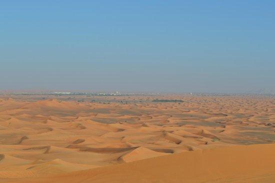 Al Maha, A Luxury Collection Desert Resort & Spa : Activité 4x4 dans le désert