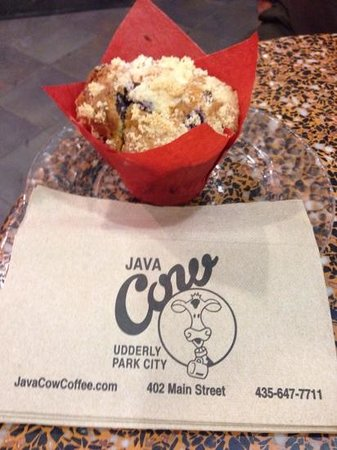 Java Cow Bakery: best gluten free berry muffin EVER