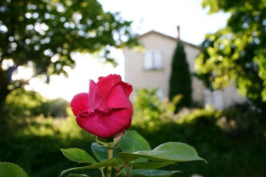 La Roseraie-Drôme : La Roseraie-Dôme