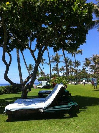 Marriott's Maui Ocean Club  - Lahaina & Napili Towers : Cabanas beachfront