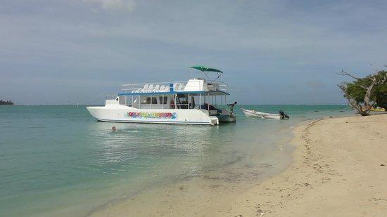 Splash Sports Catamaran Cruises: Lunch break at No Man's Land