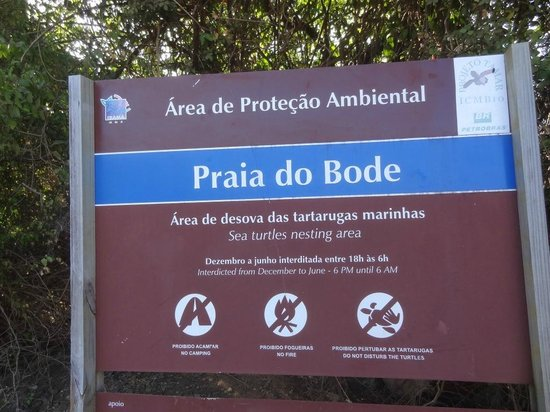 Bode Beach : Praia do Bode