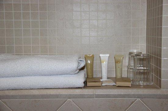 Rott Hotel: bagno